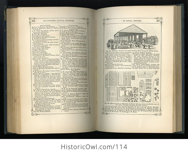 Antique Illustrated Book Annual Register of Rural Affairs for 1858 9 60 Vol Ii C1860 - #OjetYY0kTfQ-10