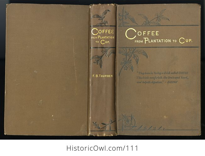 Antique Illustrated Book Coffee from Plantation to Cup by Francis B Thurber C1883 - #seSKzbUGdnk-2