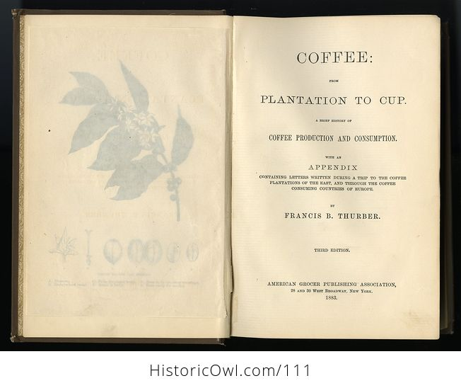 Antique Illustrated Book Coffee from Plantation to Cup by Francis B Thurber C1883 - #seSKzbUGdnk-6