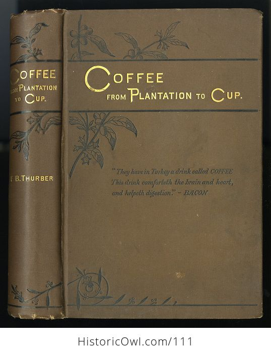 Antique Illustrated Book Coffee from Plantation to Cup by Francis B Thurber C1883 - #seSKzbUGdnk-1