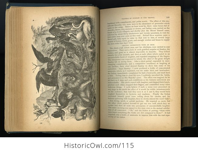 Antique Illustrated Book Marvelous Wonders of the Whole World C1886 - #wJlNpWQywwk-9