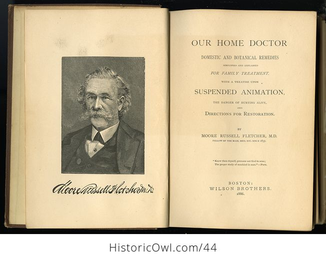 Antique Illustrated Book Our Home Doctor Domestic and Botanical Remedies by Moore Russell Fletcher C1886 - #D6tS2HIz5mg-2