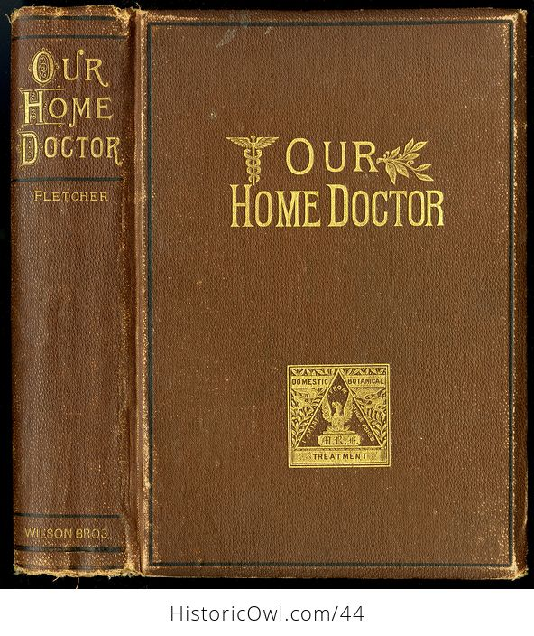 Antique Illustrated Book Our Home Doctor Domestic and Botanical Remedies by Moore Russell Fletcher C1886 - #D6tS2HIz5mg-1