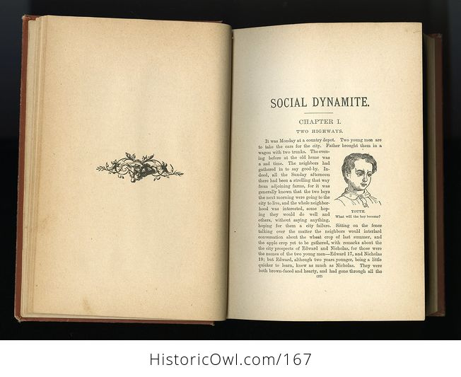 Antique Illustrated Book Social Dynamite or the Wickedness of Modern Society by T Dewitt Talmage C1888 - #PLRqpOru89A-16