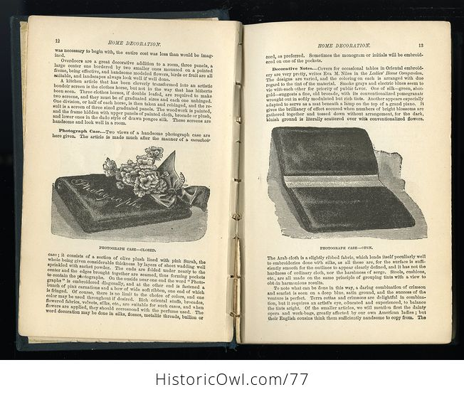 Antique Illustrated Book the American Domestic Cyclopedia by F M Lupton - #n4zq332vtx0-5