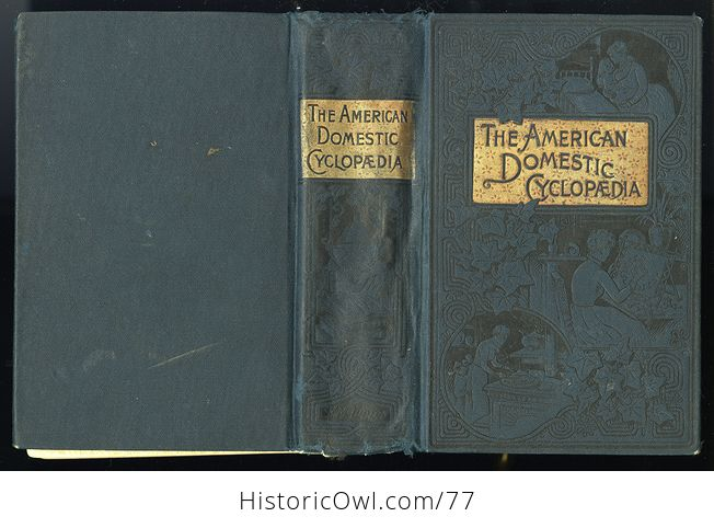 Antique Illustrated Book the American Domestic Cyclopedia by F M Lupton - #n4zq332vtx0-2