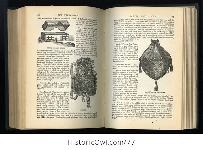 Antique Illustrated Book the American Domestic Cyclopedia by F M Lupton - #n4zq332vtx0-7