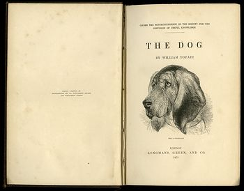 Antique Illustrated Book the Dog by William Youatt C1879 #offK7OBGWBg
