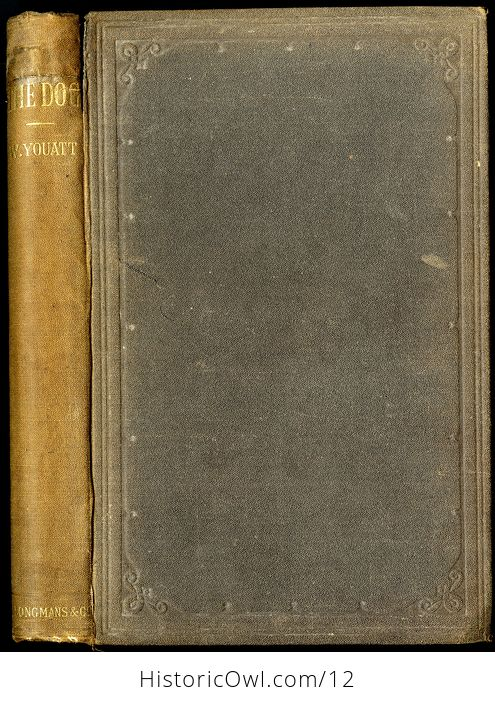 Antique Illustrated Book the Dog by William Youatt C1879 - #offK7OBGWBg-7