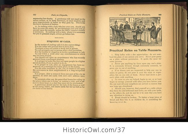 Antique Illustrated Book the Household Guide or Domestic Cyclopedia C1900 - #7vzXZ6NnELs-5