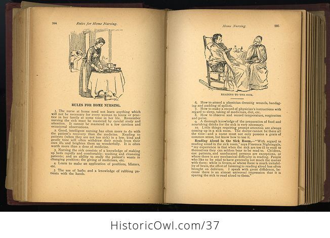 Antique Illustrated Book the Household Guide or Domestic Cyclopedia C1900 - #7vzXZ6NnELs-9