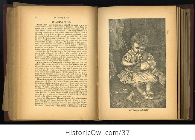 Antique Illustrated Book the Household Guide or Domestic Cyclopedia C1900 - #7vzXZ6NnELs-6
