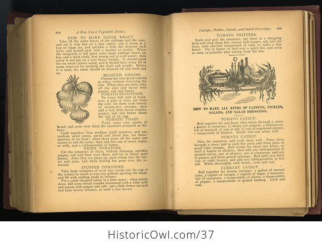 Antique Illustrated Book the Household Guide or Domestic Cyclopedia C1900 - #7vzXZ6NnELs-3