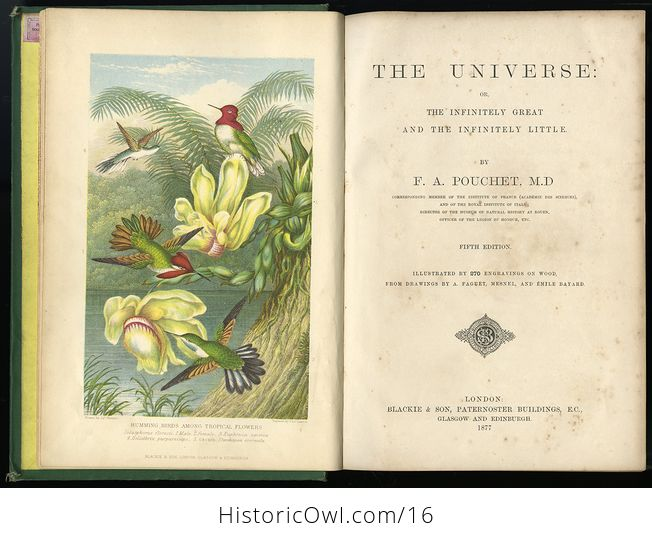 Antique Illustrated Book the Universe or the Infinitely Great and the Infinitely Little by F a Pouchet C 1877 - #lXXFChtPVxI-3