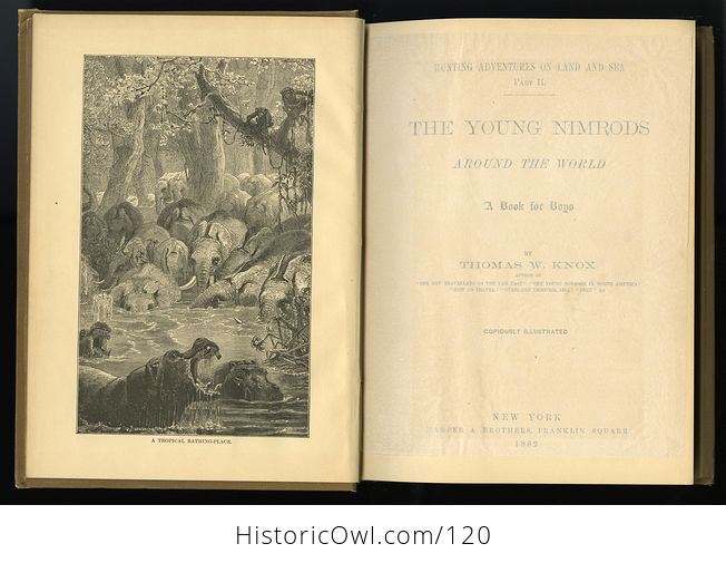 Antique Illustrated Book the Young Nimrods Around the World by Thomas W Knox C1882 - #MVkM5qE2NsI-2