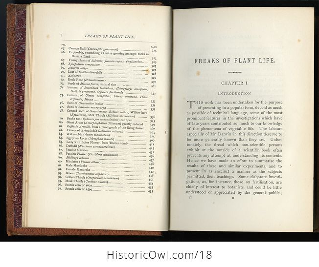 Freaks and Marvels of Plant Life by M C Cooke C 1880 - #IDX9BStlEig-6