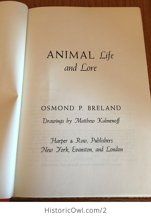 Illustrated Book Animal Life and Lore by Osmond P Breland 1963 - #u3KAMQRibqY-4