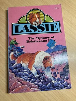 Lassie the Mystery of Bristlecone Pine Paperback Book by Steve Frazee C1979 #QN7EwgjsYgY