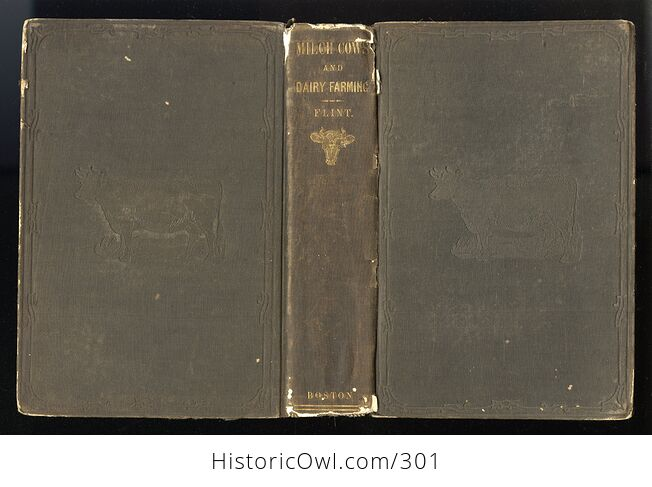 Milch Cows and Dairy Farming Antique Illustrated Book by Charles L Flint C1859 - #i29Hij4XmDQ-2