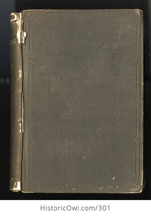 Milch Cows and Dairy Farming Antique Illustrated Book by Charles L Flint C1859 - #i29Hij4XmDQ-1