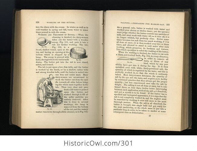 Milch Cows and Dairy Farming Antique Illustrated Book by Charles L Flint C1859 - #i29Hij4XmDQ-9
