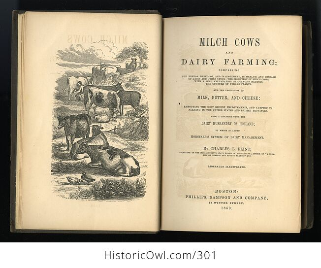Milch Cows and Dairy Farming Antique Illustrated Book by Charles L Flint C1859 - #i29Hij4XmDQ-4