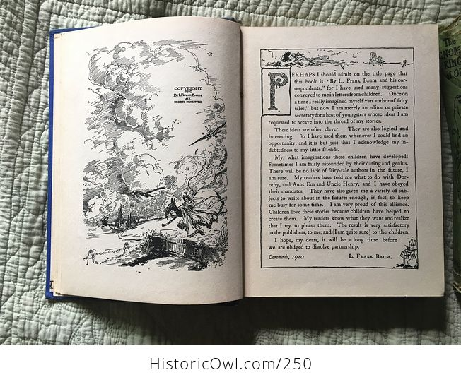 Set of L Frank Baum Books the Emerald City of Oz the Gnome King of Oz Sky Island the Reilly and Lee Co and Illustrated by John R Neill - #WPERG28vUdg-11