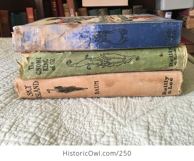 Set of L Frank Baum Books the Emerald City of Oz the Gnome King of Oz Sky Island the Reilly and Lee Co and Illustrated by John R Neill - #WPERG28vUdg-1