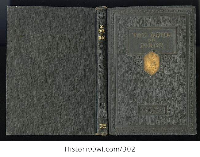The Book of Birds Published by the National Geographic Society C1927 - #DHRFv11ay10-2