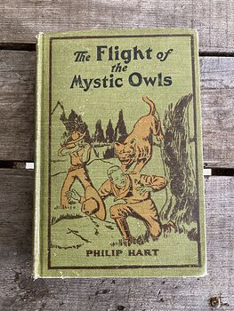 The Flight of the Mystic Owls Vintage Book by Philip Hart C1929 #5upBIIMlrlc