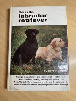 This Is the Labrador Retriever Book by Dorothy Howe C1972 #wei0TjIMYZ4