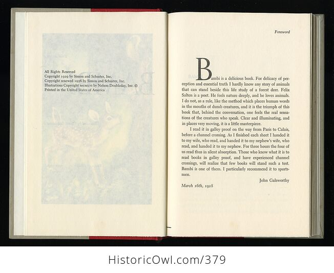 Vintage Bambi Illustrated Book by Felix Salten Simon and Schuster C1956 - #ifRb52jZLhU-6