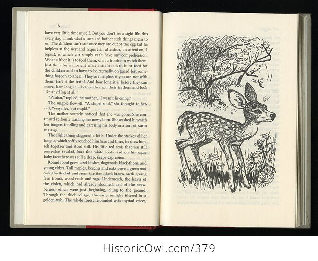 Vintage Bambi Illustrated Book by Felix Salten Simon and Schuster C1956 - #ifRb52jZLhU-5