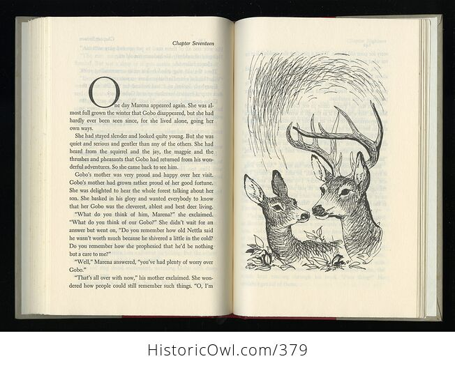 Vintage Bambi Illustrated Book by Felix Salten Simon and Schuster C1956 - #ifRb52jZLhU-4