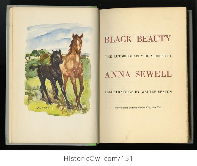 Vintage Book Black Beauty the Autobiography of a Horse by Anna Sewell Illustrated by Walter Seaton Junior Deluxe Editions - #ySRxoD5XQPg-8