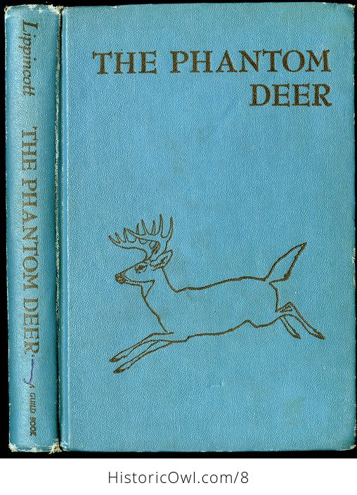 Vintage Book the Phantom Deer by Joseph Wharton Lippincott 1954 - #jOfUo1QJhAA-1