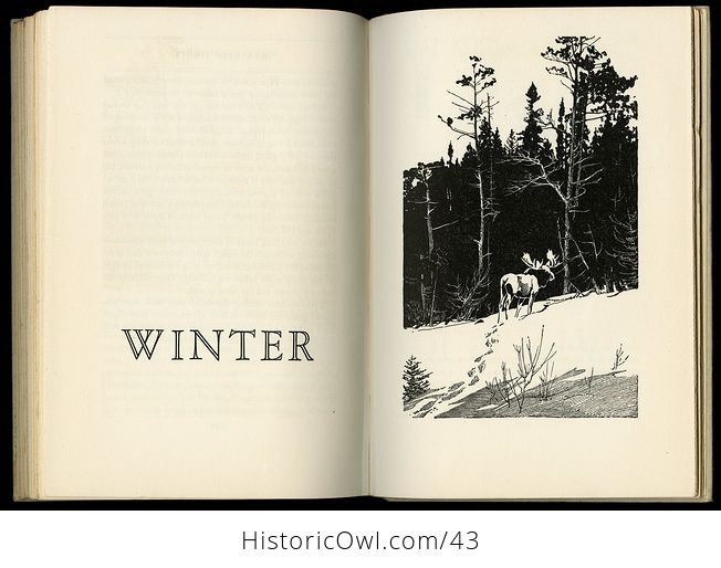 Vintage Book the Singing Wilderness by Sigurd F Olson C 1957 - #QbSzqbOIedA-2