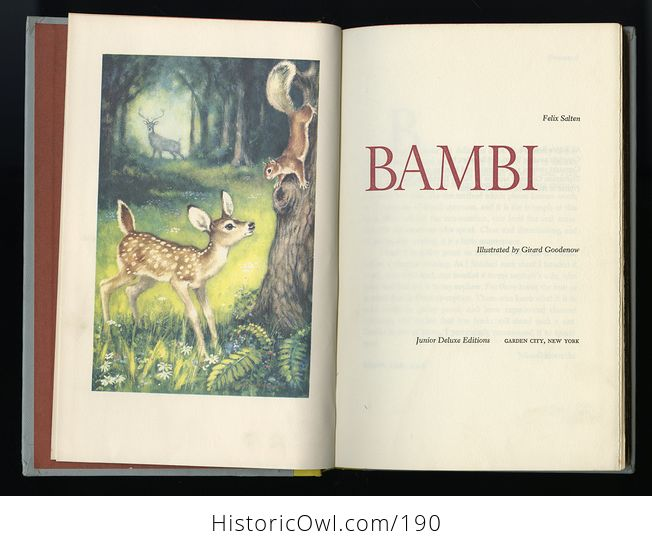Vintage Illustrated Book Bambi by Felix Salten Junior Deluxe Editions C1956 - #MvyS5SvtS9Q-5