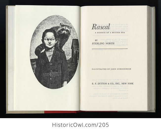 Vintage Illustrated Book Rascal a Memoir of a Better Era by Sterling North C1963 - #bg81N0bc0yM-5