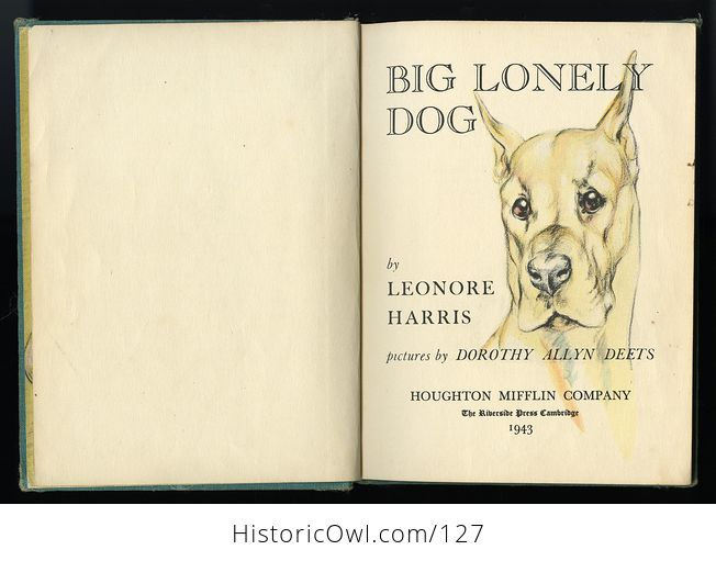Vintage Illustrated Childrens Book Big Lonely Dog by Leonore Harris C1943 - #CetcS2t5JfI-6